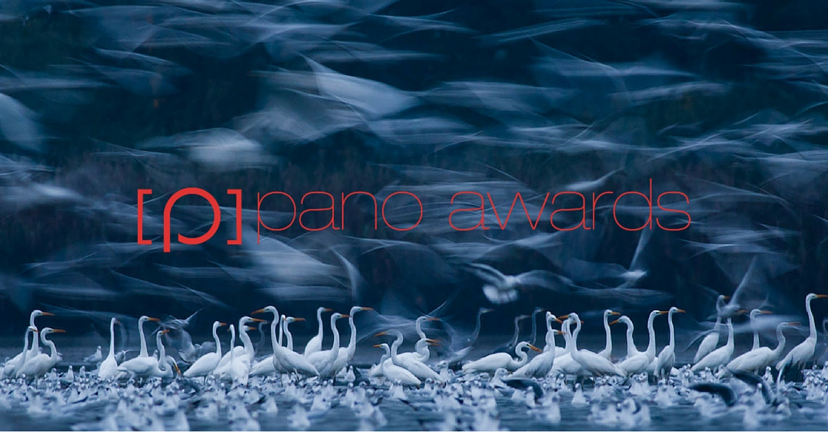 2016 Epson International Pano Awards - logo