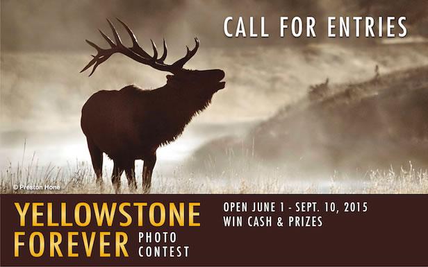 Yellowstone Forever Photo Contest 2016 - logo