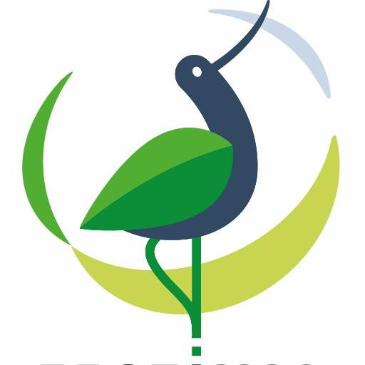 International Wildbird Photo Competition 2017 - logo