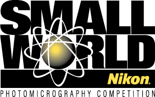 Nikon Small World Competition 2017 - logo
