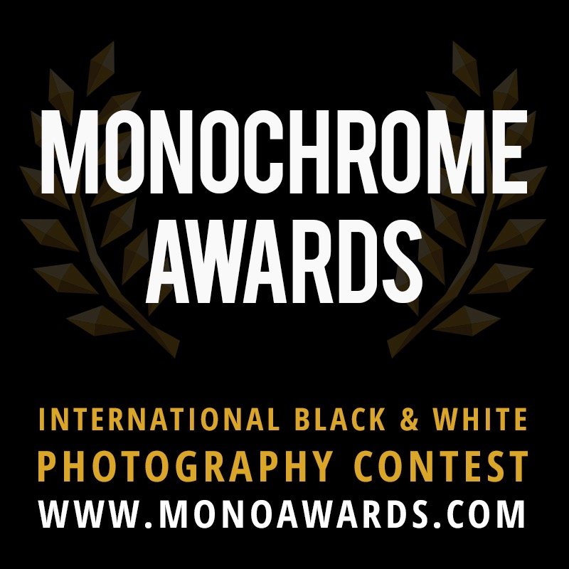 Monochrome Awards 2017 - logo