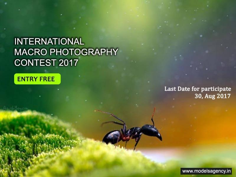 Macro Photography Contest 2017 - logo