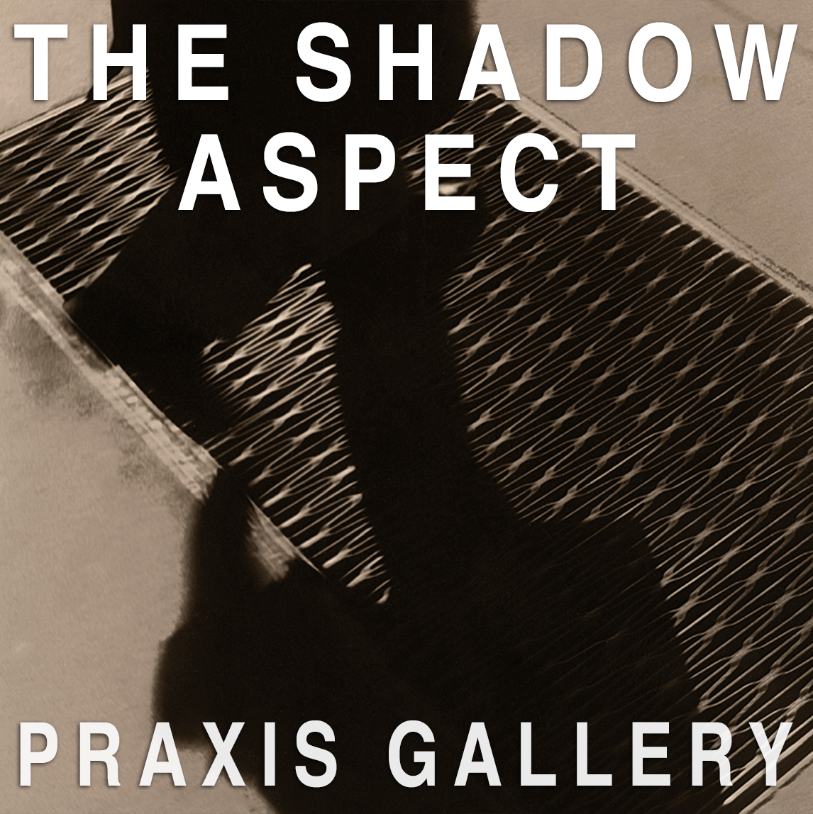 International Juried Exhibition | Theme | The Shadow Aspect - logo