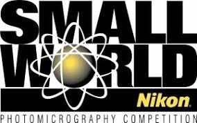 Nikon Small World Competition 2019 - logo