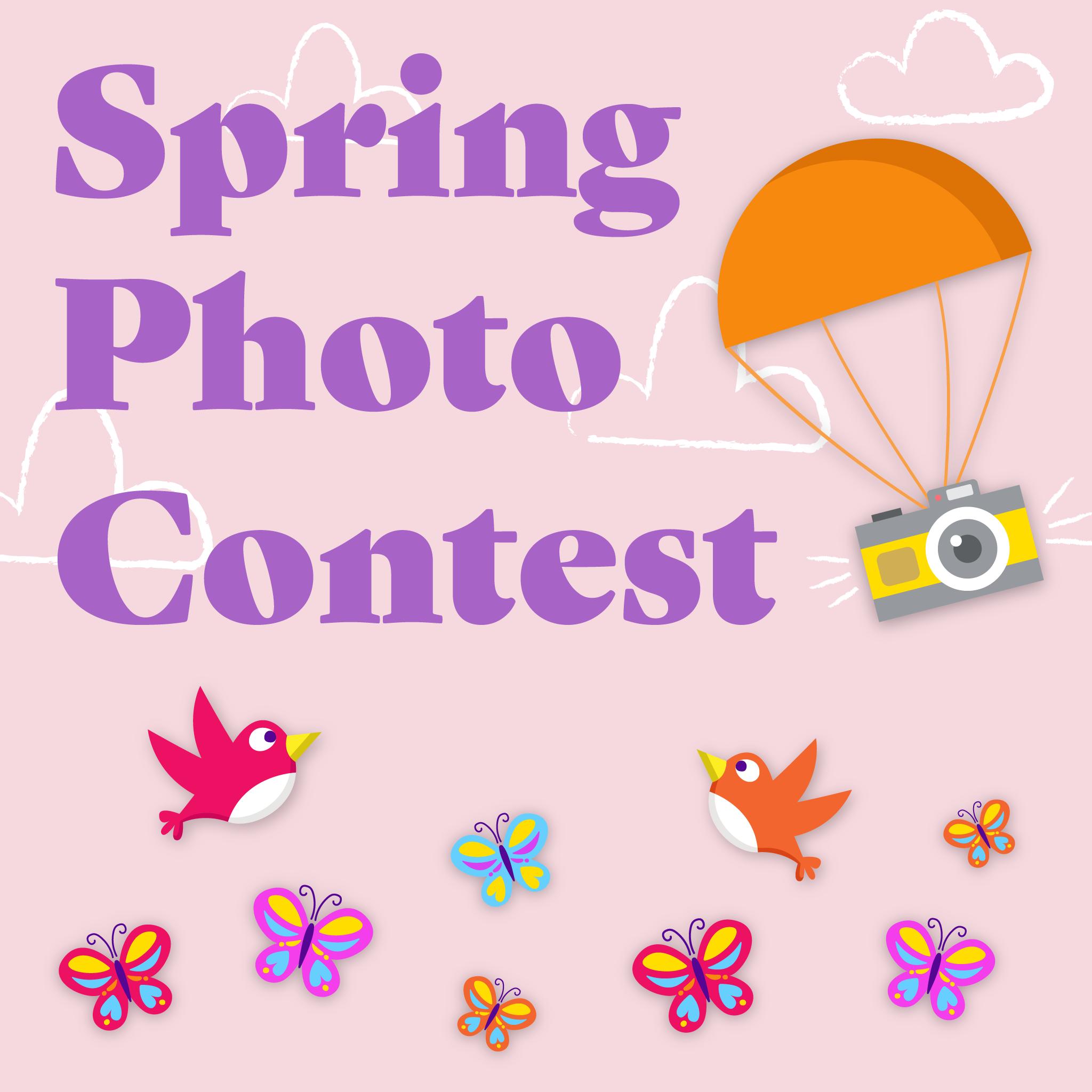 ImageFramer Spring 2018 Photo Contest - logo