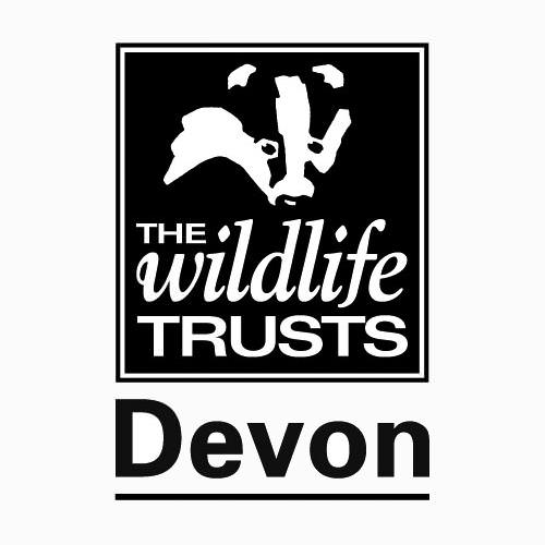 Devon Nature and Landscape Photography Competition 2018 - logo