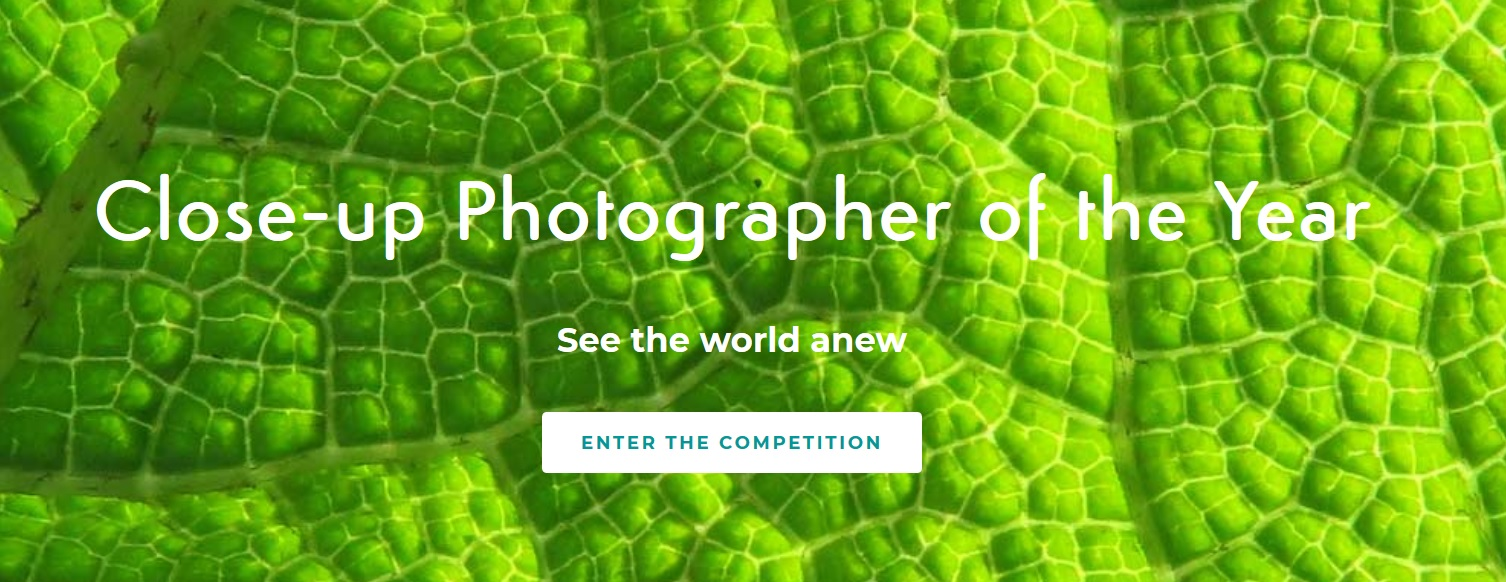 CUPOTY: Close-Up Photographer of the Year 2019 - logo