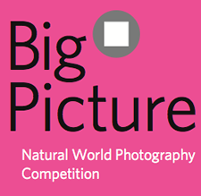 Big Picture 2016 – Natural World Photography Competition - logo