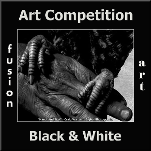 """2nd Annual """"Black & White"""" Art/Photo Competition - logo"""