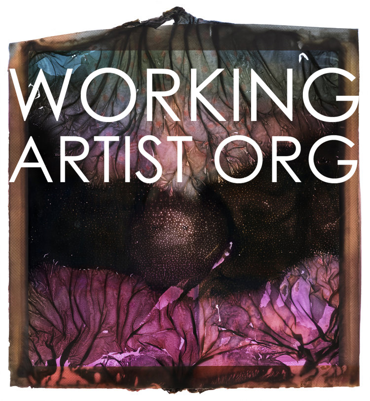 WAO Photography Award | Spring Call for Submissions - logo