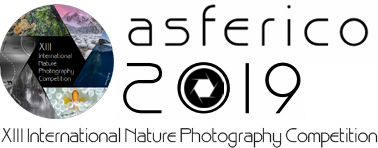XIII International Nature Photography Competition ASFERICO 2019 - logo
