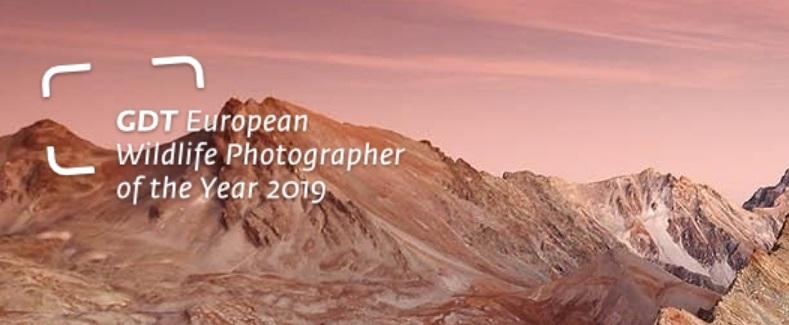 GDT European Wildlife Photographer of the Year 2019 - logo
