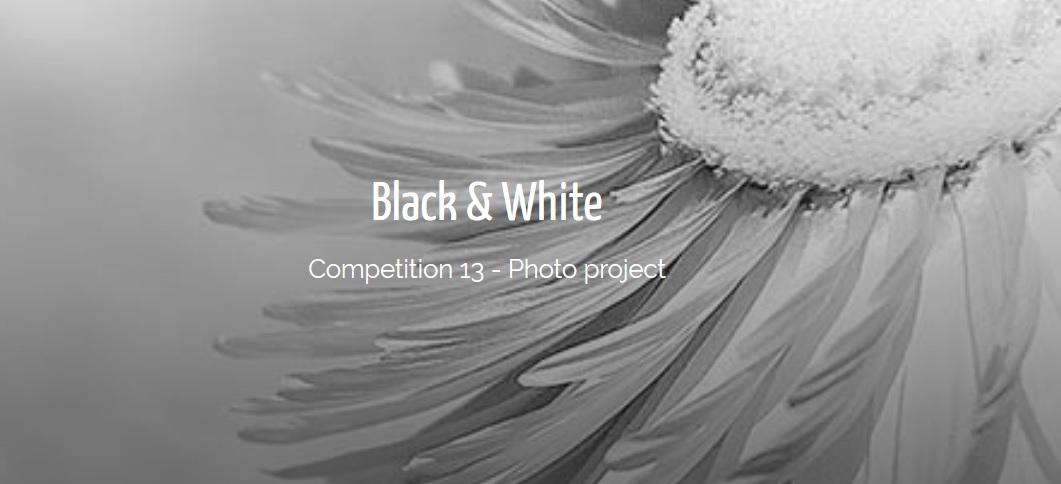 IGPOTY – Black & White Competition 2019 - logo
