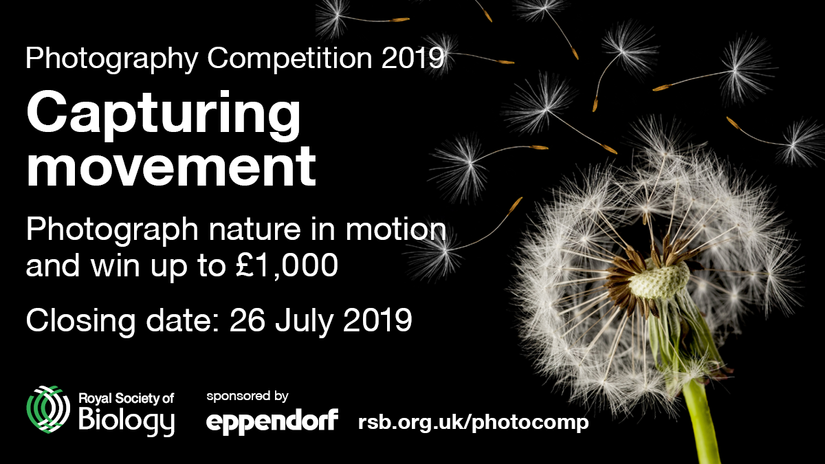 The Royal Society of Biology Annual Photography Competition 2019 - logo