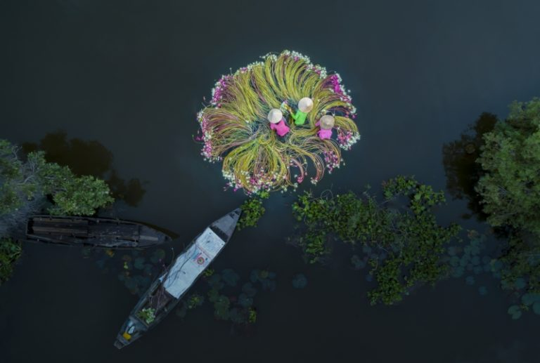 People 2019 Winner, Flowers on the Water By Khanh Phan