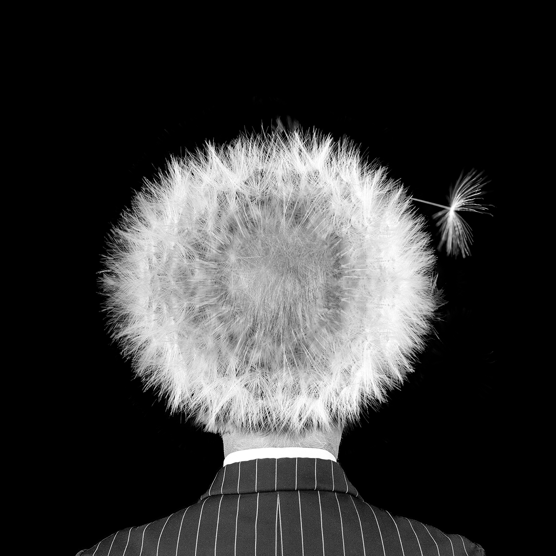 1ST PLACE - Black & White Conceptual PHOTO of the Year 2019, hairloss - Michael Knudsen