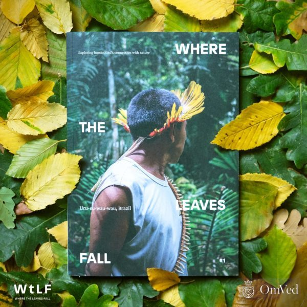 Where the Leaves Fall magazine – exploring our connection with nature - DEATH