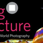 BigPicture Natural World Photography Competition 2020