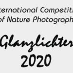 Glanzlichter Nature Photo Contest 2020