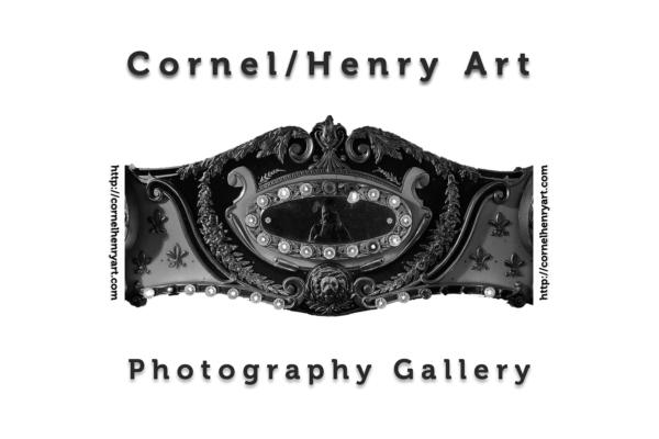 Cornel/Henry Art 2020 Artist Award Call for Entries
