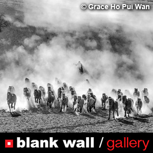 Monochrome by Blank Wall Gallery