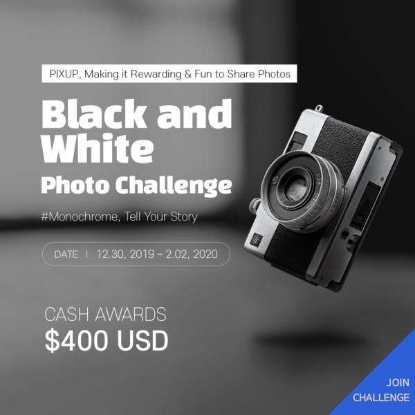 PIXUP - Black and White Photo Challenge