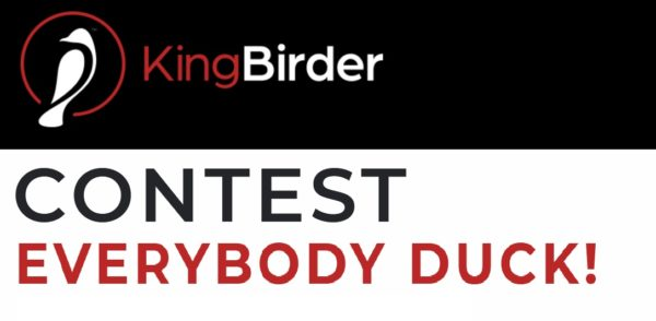 KingBirder 2020 Everybody Duck Photo Contest