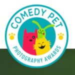 Comedy Pet Photography Awards 2020