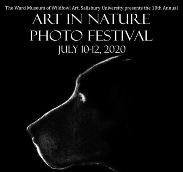 10th Annual Art in Nature Photo Festival 2020