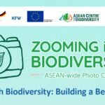 Zooming in on Biodiversity 2020