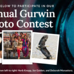 Gurwin Annual Photo Contest 2021