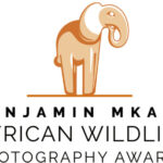2021 Benjamin Mkapa African Wildlife Photography Awards
