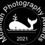 Mosman Photography Awards 2021