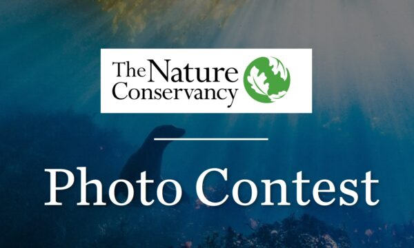 Nature Conservancy's Global Photo Contest 2021