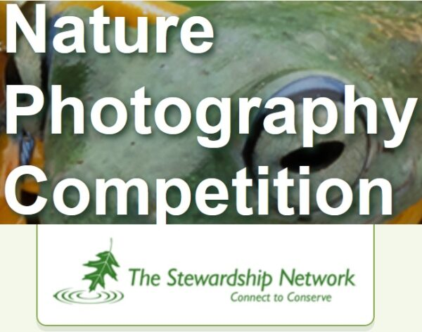 Stewardship Network Photography Competition 2021