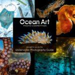 Ocean Art 2021 Underwater Photo Competition